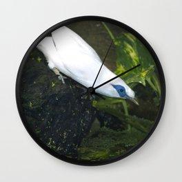 Bali Myna Wall Clock