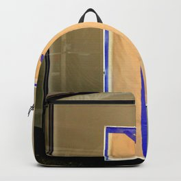 Display Windows For Dummies Backpack
