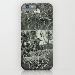 Vintage Print - The Birds of Tasmania (1910) - Night Heron Nest, Eggs and Young iPhone Case