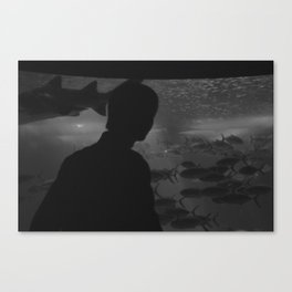 Underwater. Canvas Print