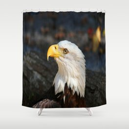 In The Eye Of A Raptor Shower Curtain