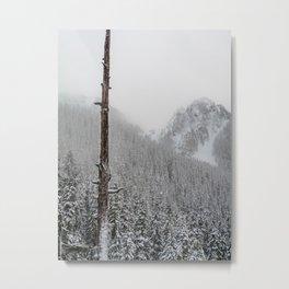 Verticality Metal Print