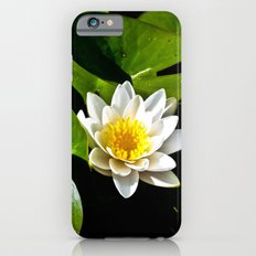 Pond Lilly iPhone 6s Slim Case
