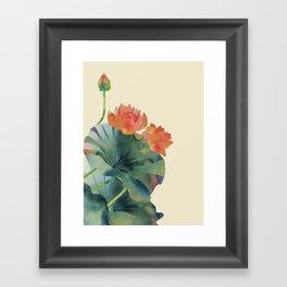 Lotus Bloom Framed Art Print