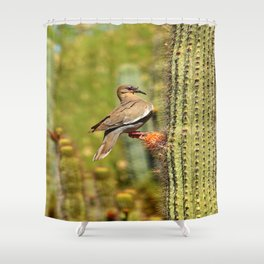 Perching On A Saguaro Cactus Shower Curtain