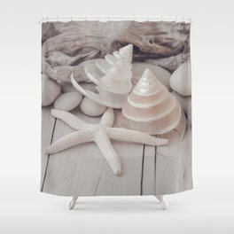 Beach Still Life With Shells And Starfish Shower Curtain