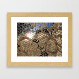 Lace Curtain 1 Framed Art Print