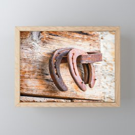 Beautiful real old horseshoe hanging from an aged wooden door Framed Mini Art Print