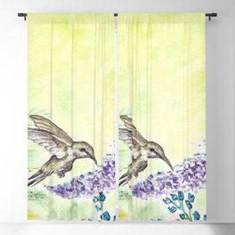 Hummingbird and Salvia Flowers Blackout Curtain
