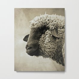 SHEEPISH GRIN - Old Friends Collection Metal Print