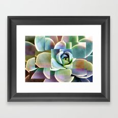 Succulents collage Framed Art Print