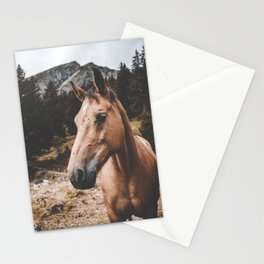 Rustic Horse Stationery Cards