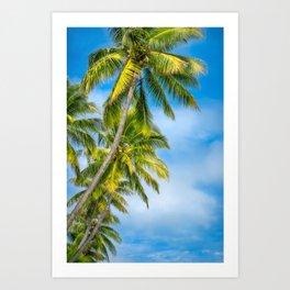 Looking up at some beautiful coconut palm trees at Kuto Bay. Art Print