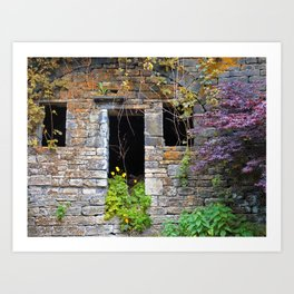 ancient house  in a wall Art Print