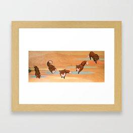 five fox fuge Framed Art Print