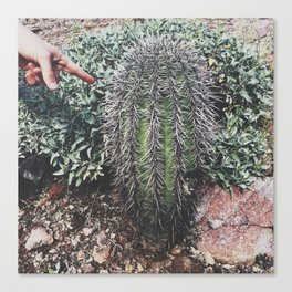 Ouch! Cactus Canvas Print