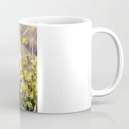 Spring - flowers Coffee Mug