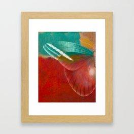 Moths 3 Framed Art Print