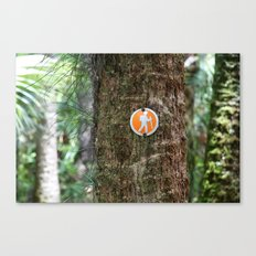 Florida Hike  Canvas Print