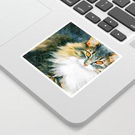 Cat with Orange Eyes Sticker