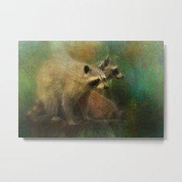 Raccoons Waiting for Nighfall Metal Print