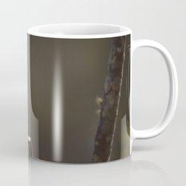 Birds from Pantanal chibum Coffee Mug