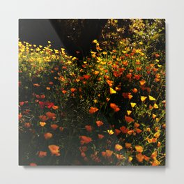 Beautiful garden flowers Metal Print