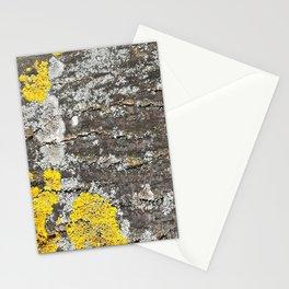 Beautiful lichen on tree bark Stationery Cards