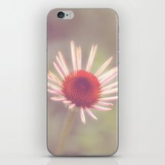 this summer iPhone & iPod Skin