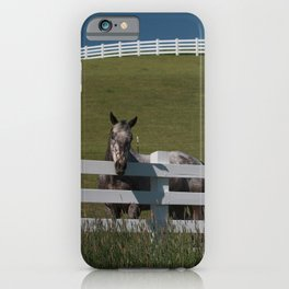 Horse in the Palouse iPhone Case
