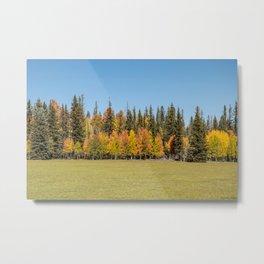 Autumn Colors - II, North_Rim Grand_Canyon, AZ Metal Print