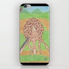 Yoga in Africa iPhone & iPod Skin