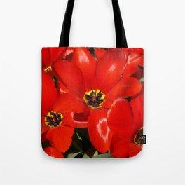Seductive Red Tote Bag