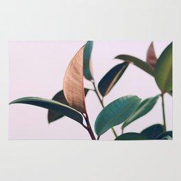 Ficus Elastica #4 Rug