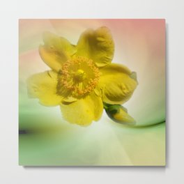 little pleasures of nature -406- Metal Print
