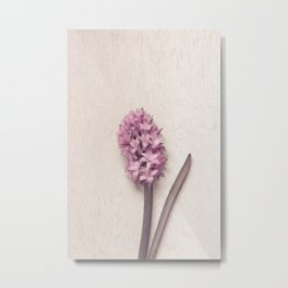 Pink Hyacinth Metal Print