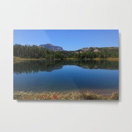 Sunshine Meadows - Canadian Rockies - Banff Metal Print