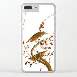 Hermit Thrush Bird Clear iPhone Case