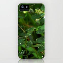 Diamonds iPhone Case