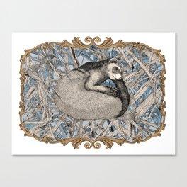 my little ferret  Canvas Print