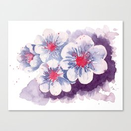 Watercolor cherry blossoms Canvas Print