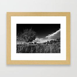 Dark Farms Framed Art Print