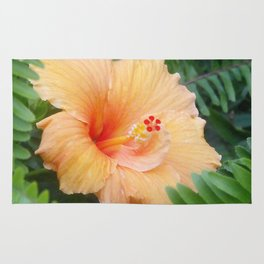 Orange Hibiscus Flower Rug