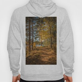 Beautiful path in the forest by a river in autumn mood Hoody