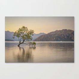 Wanaka Tree 3 Canvas Print
