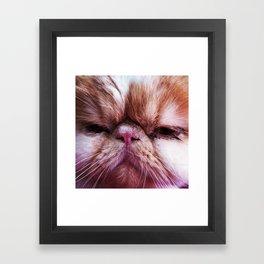 Meow Framed Art Print