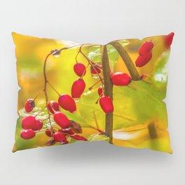 Autumn drops Pillow Sham