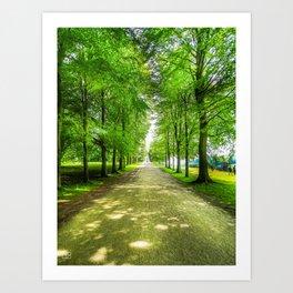 walkway. Art Print