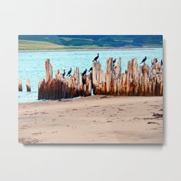 Perched on Wharf Remains Metal Print