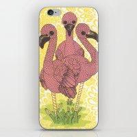 flamingos iPhone & iPod Skins featuring Flamingos  by Amanda James